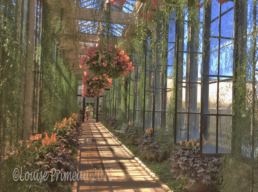 Enchanting Longwood Gardens Pennsylvania Louise 39 S Articulations